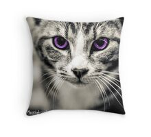 Kitten Creative Throw Pillow