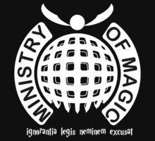 MINISTRY OF MAGIC by viperbarratt