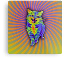 Psychedelic Kitty (Remaster) Metal Print