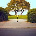 No Entry by Jamie Harrington