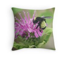 Bee Balm and Bumble Throw Pillow