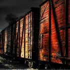 Midnight Train by Dana Horne