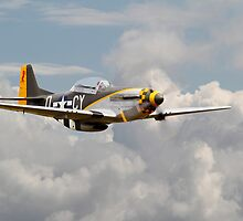 Mustang P51D - Miss Velma by Pat Speirs