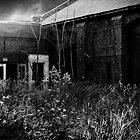 Fell On Black Days by Dana Horne