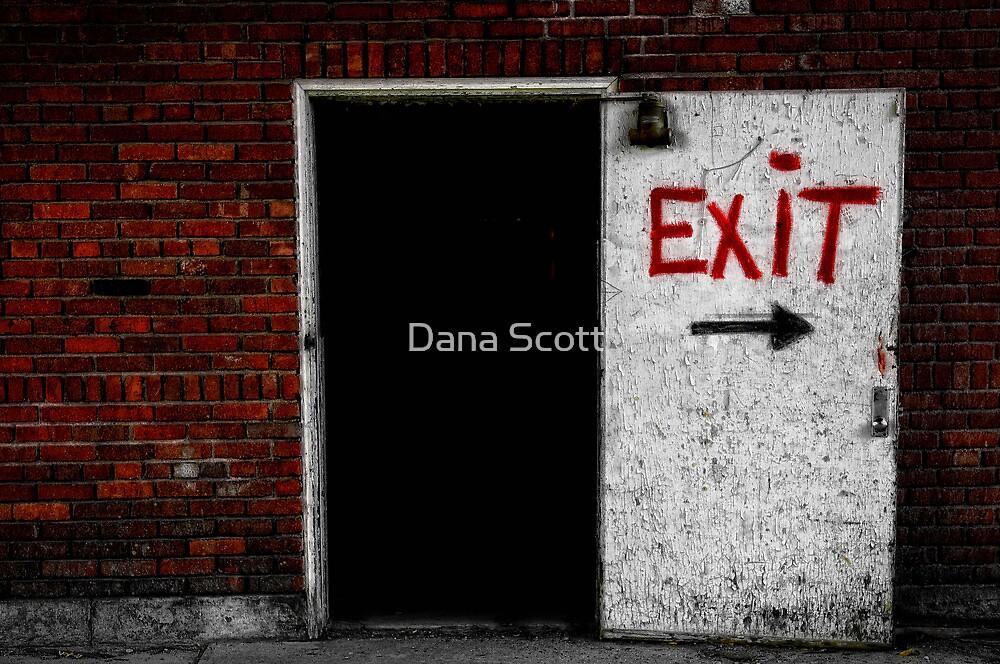 The Walkin' Blues by Dana Horne