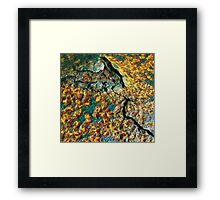 Rust In The Elements Framed Print