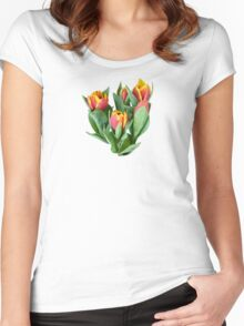 Tulips Just Opening Women's Fitted Scoop T-Shirt