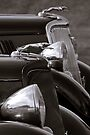 Pair of '34 Fords by dlhedberg