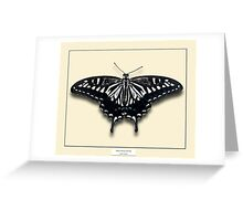 Asian Swallowtail Butterfly - Specimen style print Greeting Card