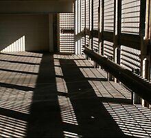 Shadow Mania by Peter Baglia