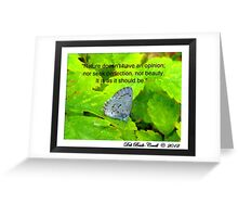 """""""Why Do You Enjoy Photographing Nature?"""" Greeting Card"""