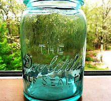 The Doolittle Jar by Tmac02892