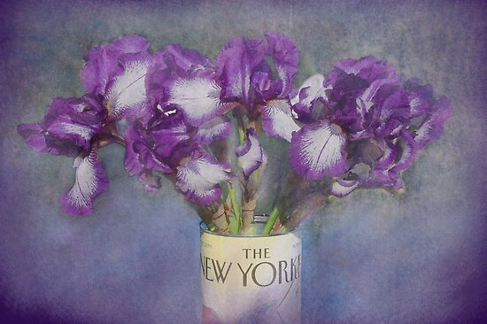 Iris in the New Yorker by Jeff Burgess