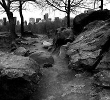 Path. Rock. Central Park. by Amanda Vontobel Photography