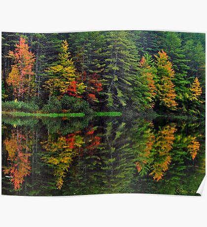 Mother Nature Paints with Water Colors Poster