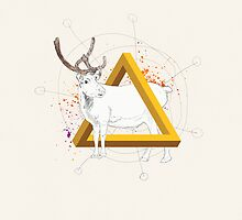 Reindeer Triangle by Martin Kofod
