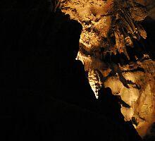 Rock Face by ceWOLFE