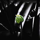 Green Shining by saseoche