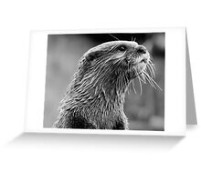 Asian small-clawed otter (Aonyx cinerea) Greeting Card