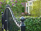 huge gate, small garden by shireengol