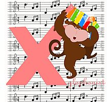 x for xylophonist Photographic Print