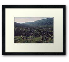 Desert in Spring, Anza-Borrego Desert Framed Print