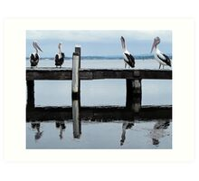 four pelicans on the jetty Art Print