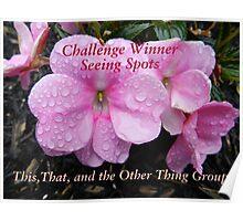 Challenge Winner - Seeing Spots Poster