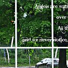 Angels Watching Over Us.... by Jane Neill-Hancock