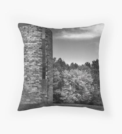 No witty title available  Throw Pillow