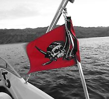 Pirate Flag by rljones