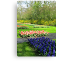 Colourful Beds of Hyacinths and Tulips - Keukenhof Gardens Canvas Print