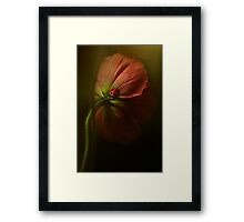 The way back Framed Print