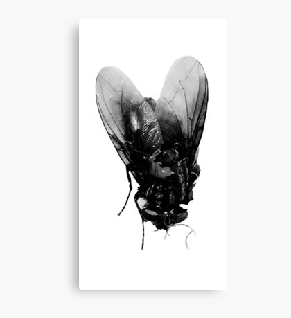 BLACK METAL FLY - ORIGINAL PHOTOGRAPHY Canvas Print