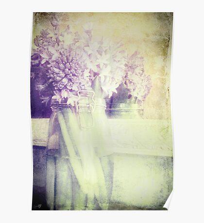Hyacinth Memory Poster