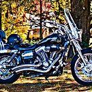 Harley Davidson Super Glide Custom by Alexander Meysztowicz-Howen