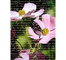 Magical Cosmos Photographic Print