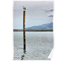 Lake Ferry. South Wairarapa coast. New Zealand. Poster
