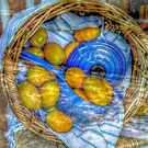 Lemons, Lemons, Lemons!!!! Make Lemonade! by Jane Neill-Hancock