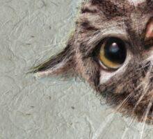 CAT spy Sticker
