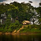 Hut on the Amazon  by Michael Telfer