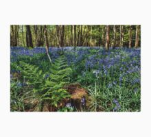 Bluebells and Ferns Kids Clothes