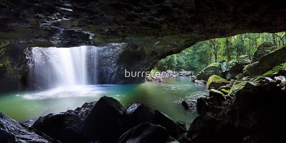 The Natural Bridge, Springbrook National Park, Queensland by burrster