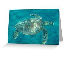 Samoa Turtle Greeting Card