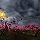 Its Peach Time by Charles &amp; Patricia   Harkins ~ Picture Oregon
