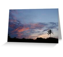 Bali Palm At Dawn Greeting Card