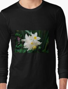 Daffodil flowers Long Sleeve T-Shirt