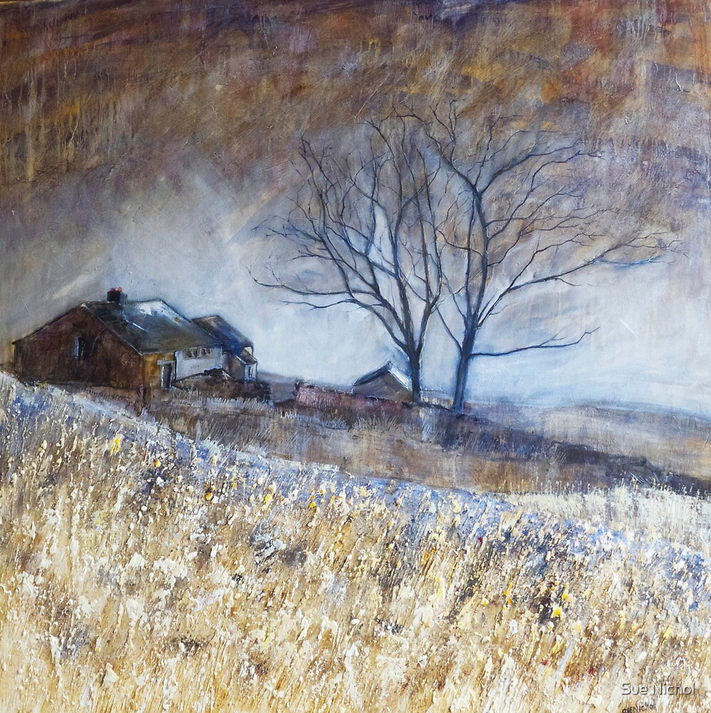 Wuthering Heights ( Top Withens) 2 by Sue Nichol