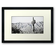 Saguaro Framed Print