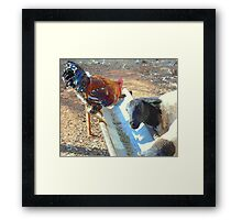 Dinner is on the table! Framed Print